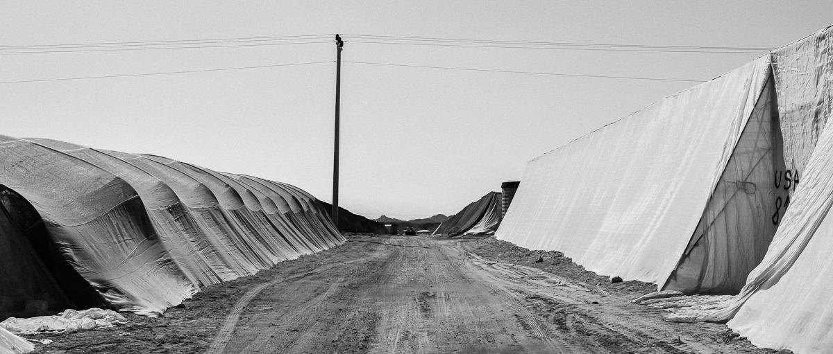 Arava Peace Road-21