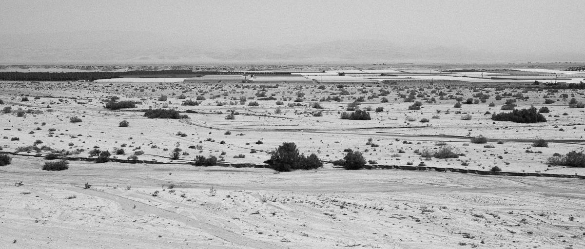 Arava Peace Road-4